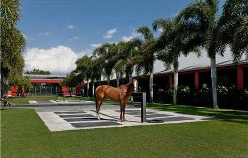 Tommy Lee Jones Lists Miami Polo Ranch for $20M