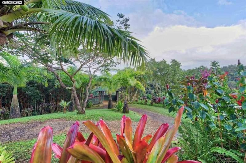Hawaiian casino. MEALS-VISION.TK