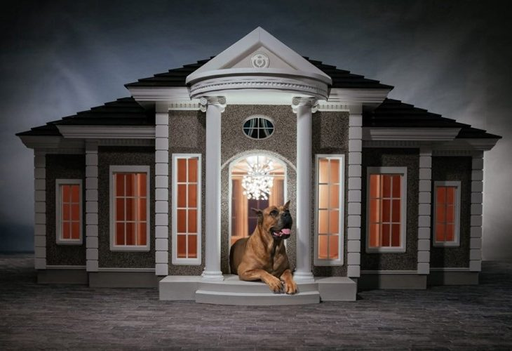 Is 200k Too Much For A Dog House American Luxury
