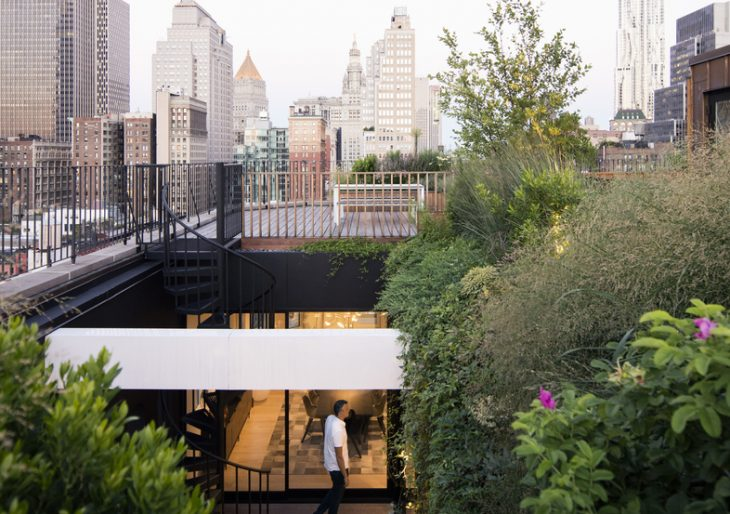 Gerken Residence in New York by Young Projects