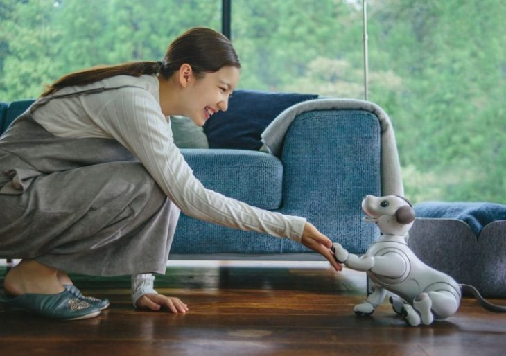 Ready or Not, Sony Reintroduces Aibo, the AI-Equipped Smart Dog